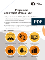 P3O Brochure