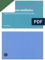 Viveiros de Castro.pdf