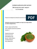 proyecto Evaluacion SA.docx
