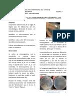 P1 MICRO EXP.docx