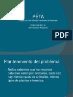 presentacion peta.pptx