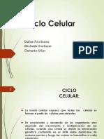 ciclo celular CECAN.pptx