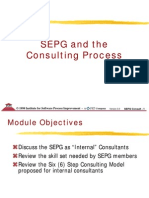 SEPG and Consulting Process