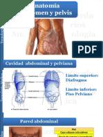 Sesion 2. Anatomia radiologica abdomen y pelvis.pdf