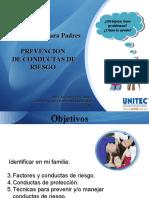 conductasdeproteccion-120615154000-phpapp01.pdf