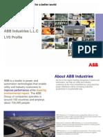 01 ABB Industries LVS Profile