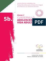 5.b. Cuadernillo Adolescencia y Vida Adulta 2