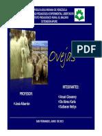 Manual  de enfermedades en ovejas