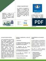 A1_IGC_Tríptico.pdf