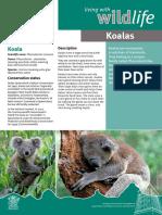el-koala