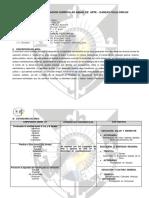 PROGRAMA  ANUAL.docx