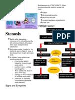 Ca1 Stenosis 1