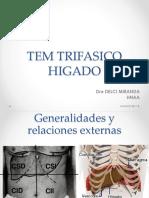 Práctica 3 - Tem Trifasico Hígado
