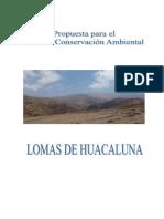 332607489-ACR-Huaca-Luna-Moquegua.pdf