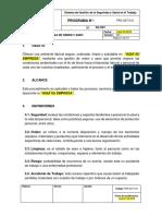 PRG-SST-012 Programa de Orden y Aseo