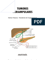 Adenocarcinoma Pancreático