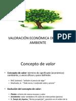Valoración Económica Del Medio Ambiente-cerrito