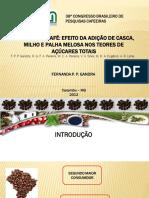 1 - Apresentação Caxambu certo.pdf