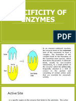 Specificity of Enzymes