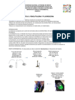 Reporte Pract 3 Fenolftlaleina