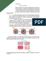Libro Guyton Medicina