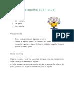 Uma_agulha_que_flutua.pdf