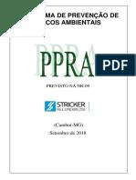 PPRA modelo 2018.docx