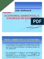 AULA DE ECONOMIA AMBIENTAL.pptx