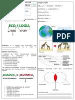 Ecologia 3 Ano