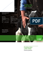 BASF Animal Nutrition_Practical Guide_Feeding Dairy Cattle