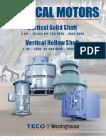 Vertical Motor Flyer 04-04