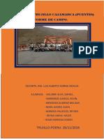 Visita Tecnia-puentes PDF
