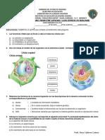 OMAR EXAMEN - BIOLOGIA - SEGUNDO BIMESTRE