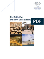 The Middle East and North Africa at Risk 2010