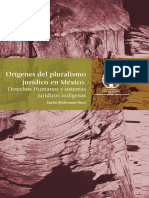 libro_origenesPluralismo_Juridico_Mexico.pdf
