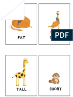 Flashcards - Tall Short Fat Thin