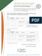 comunicado UNAJMA LENGUA Y LIT 2019.pdf