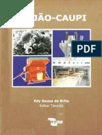 Feijão-caupi - Brito 2008.pdf