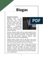 3_5 Biogas