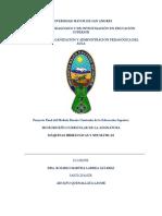 337862675-DISENO-CURRICULAR.pdf