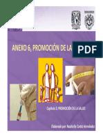 Promoción salud.pdf