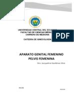 1 Aparato Genital Femenino + Pelvimetria.docx