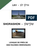 Dictionnaire D'hebreu (Par Racines) - Torah Juif Israel.pdf