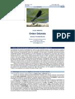 revista_41.pdf