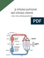 Fisiologi Sirkulasi Pulmonal Dan Sirkulasi Sitemik