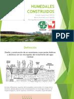 Humedales Construidos Seminario 2 Ecotecnologia