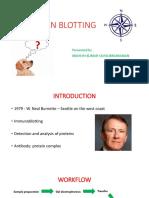 Western Blot Lab Presentation