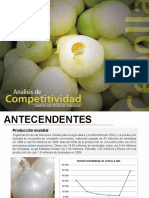 cebolla (1).pdf
