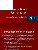 Fermentation2004 New