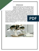 Metodos de Enfermeria
